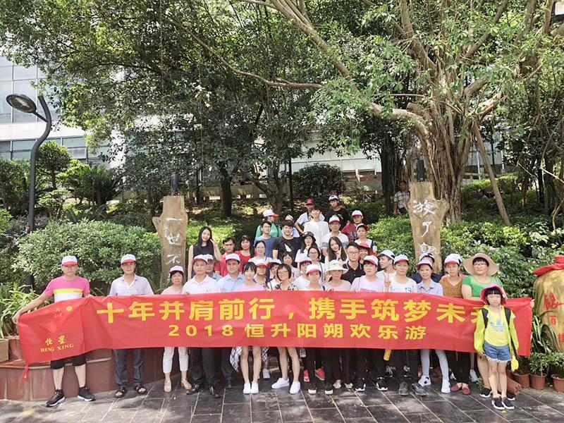 Heng Xing Array image239
